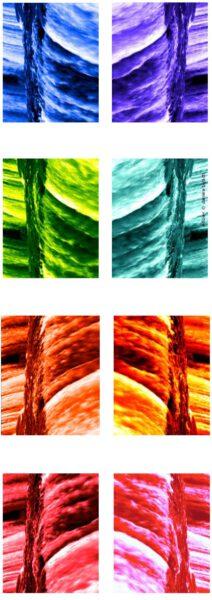 flow videoprints © daniela butsch, berlin 2003-5