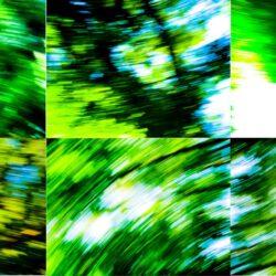 Daniela Butsch, Videostills, Multiples, 6 mal landschaft schnell, 6 times landscape fast,