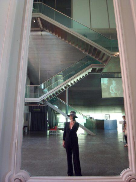 Daniela Butsch,Film, electronic images, Dona Quixote hits Vienna,