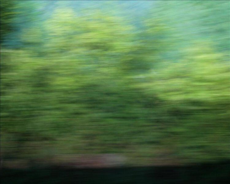 Daniela Butsch-landscape fast-videostill-