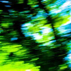 Daniela Butsch, Landschaft schnell   landscape fast, Videostill, 2003